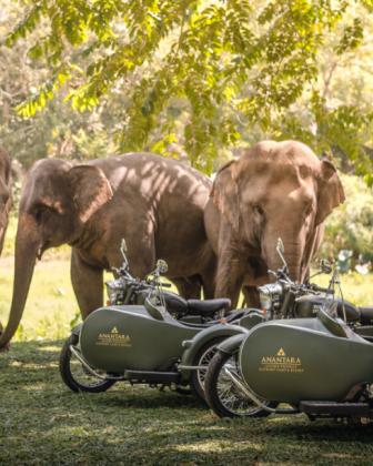 Traversez la jungle du nord de la Thaïlande en sidecars avec Anantara Golden Triangle Elephant Camp & Resort